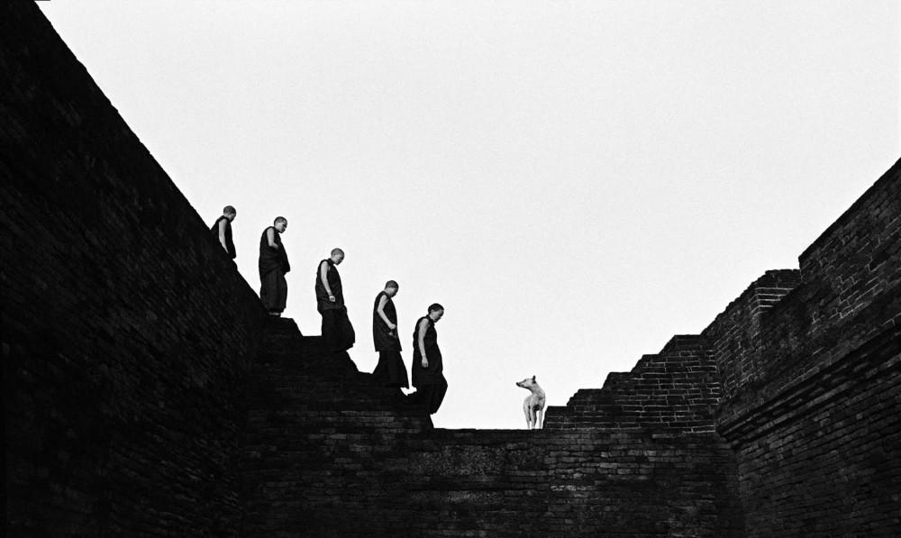 (The Stairs of Nalanda, Bodgaya, India - Caroline Halley des Fontaines)